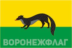 Флаг Богучара в векторе