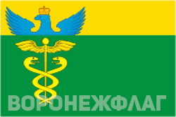 Флаг Бутурлиновка в векторе