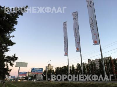 воронеж-флаг-московский-проспект