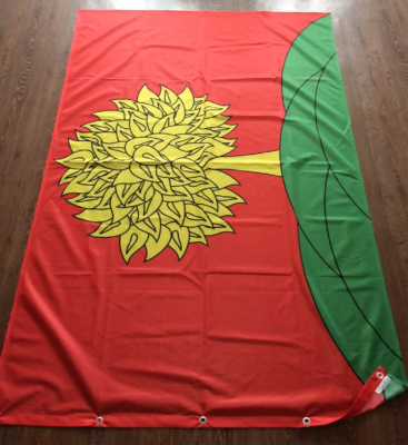 флаги-муниципалитетов-воронежа