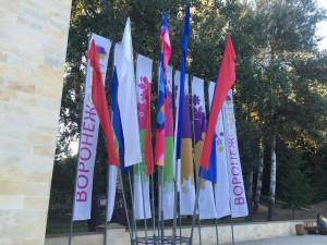 флаги воронеж сад 2016