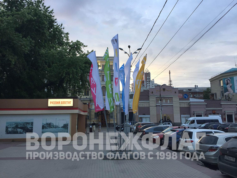 флаги-платоновского-фестиваля-воронеж