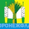флаг березово Воронеж