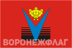 Флаг Борисоглеска в векторе