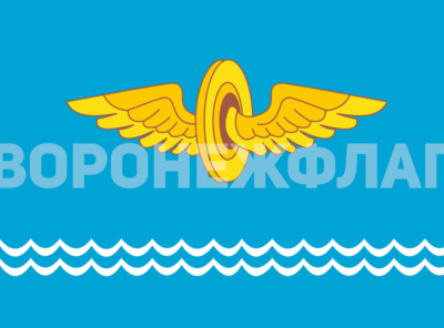 Флаг Лиски в векторе