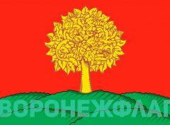 флаг-липецкой-области-в-векторе