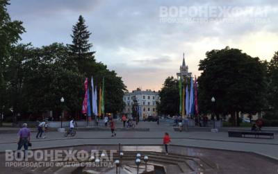 флаги-платоновского-фестиваля-в-воронеже1